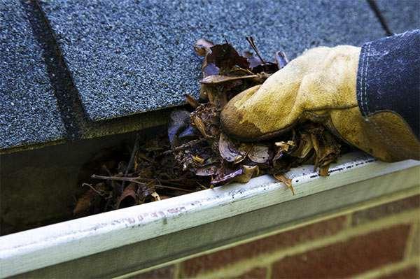 limpieza de los canalones en otoño