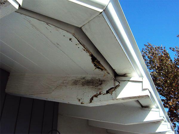 rotura de fachada por daños en los canalones