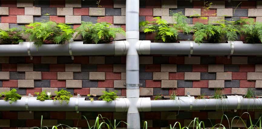 Hacer Un Jardín Vertical Con Canalones