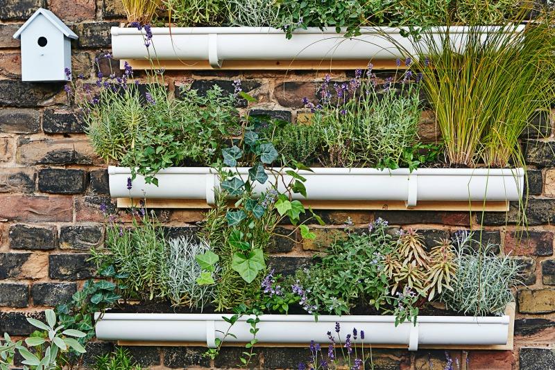 Jardin vertical canaleta