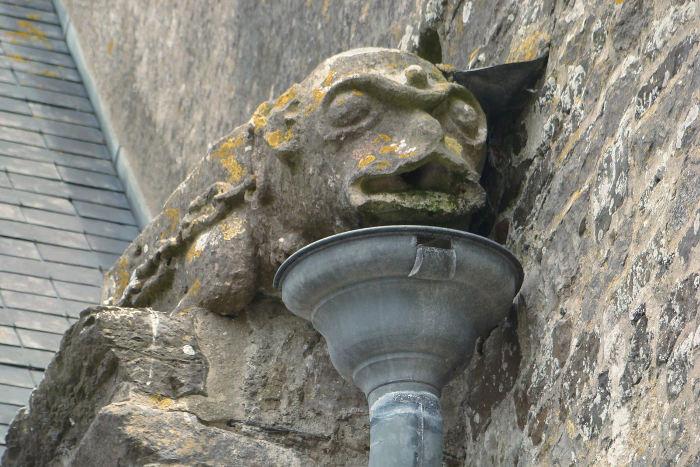 Gárgola famosa junto a un colector de una instalación pluvial